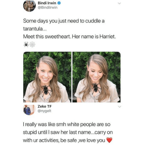 Love, Saw, and Smh: Bindi Irwin  @Bindilrwin  Some days you just need to cuddle a  tarantula...  Meet this sweetheart. Her name is Harriet.  Zeke TF  @nygelt  I really was like smh white people are so  stupid until I saw her last name...carry on  with ur activities, be safe ,we love you