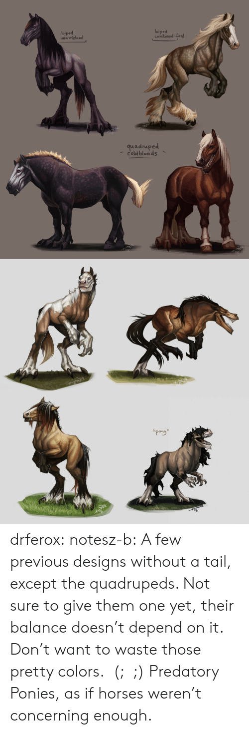 """Exceptable: biped  biped  Caldblood fea  wrmbloo  quadruped  coled bloo ds   """"pong"""" drferox:  notesz-b:  A few previous designs without a tail, except the quadrupeds. Not sure to give them one yet, their balance doesn't depend on it. Don't want to waste those pretty colors.  (;﹏;)    Predatory Ponies, as if horses weren't concerning enough."""