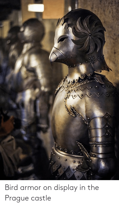 Prague: Bird armor on display in the Prague castle
