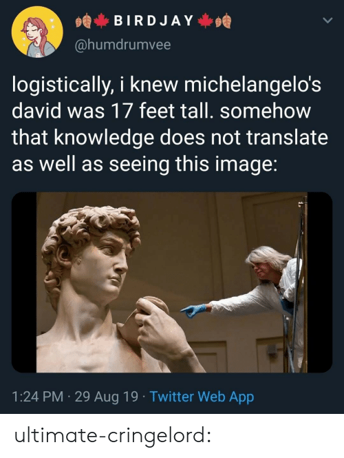 Tumblr, Twitter, and Blog: BIRDJAY  @humdrumvee  logistically, i knew michelangelo's  david was 17 feet tall. somehow  that knowledge does not translate  as well as seeing this image:  1:24 PM 29 Aug 19. Twitter Web App ultimate-cringelord: