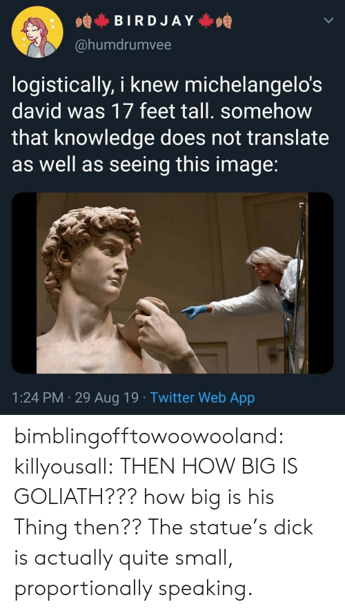 Tumblr, Twitter, and Blog: BIRDJAY  @humdrumvee  logistically, i knew michelangelo's  david was 17 feet tall. somehow  that knowledge does not translate  as well as seeing this image:  1:24 PM 29 Aug 19. Twitter Web App bimblingofftowoowooland:  killyousall: THEN HOW BIG IS GOLIATH??? how big is his Thing then??  The statue's dick is actually quite small, proportionally speaking.