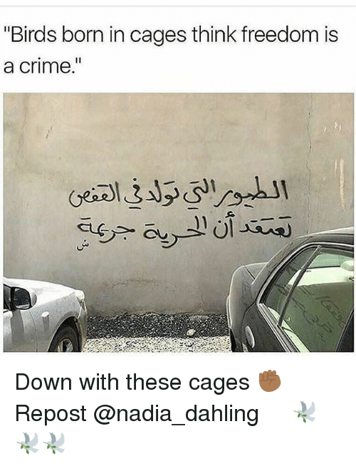 """Criming: """"Birds born in cages think freedom is  a crime  I1 Down with these cages ✊🏾 Repost @nadia_dahling ・・・ 🕊🕊🕊"""