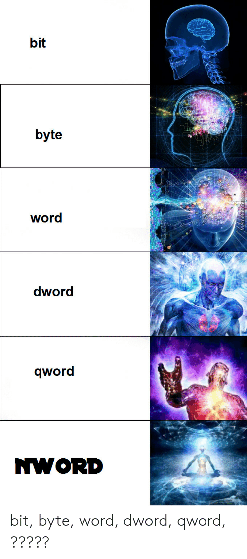 Word, Byte, and Nwor: bit  1L  byte  word  dword  qword  NWOR bit, byte, word, dword, qword, ?????