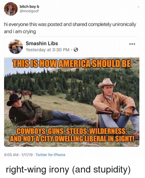 Bitch, Dallas Cowboys, and Crying: bitch boy b  @mcelgoof  hi everyone this was posted and shared completely unironically  and i am crying  Smashin Libs  Yesterday at 3:30 PM  THISISHOWAMERICASHOULD BE  COWBOYS.GUNS.STEEDS.WILDERNESS  AND NOTACITY DWELLINGLIBERAL INSIGHT!  9:05 AM 1/11/19 Twitter for iPhone right-wing irony (and stupidity)