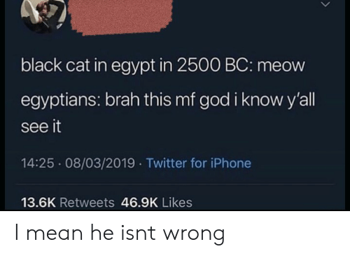 God, Iphone, and Twitter: black cat in egypt in 2500 BC: meow  egyptians: brah this mf god i know y'all  see it  14:25 08/03/2019 Twitter for iPhone  13.6K Retweets 46.9K Likes I mean he isnt wrong