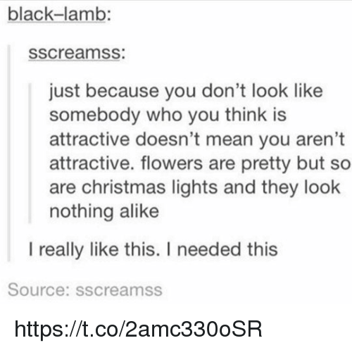 Christmas, Memes, and Black: black-lamb:  sscreamss:  just because you don't look like  somebody who you think is  attractive doesn't mean you aren't  attractive. flowers are pretty but so  are christmas lights and they look  nothing alike  I really like this. I needed this  Source: sscreamss https://t.co/2amc330oSR