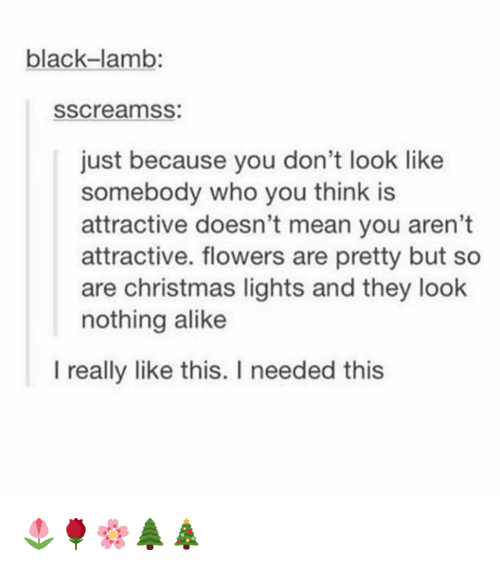 christmas lights: black-lamb:  sscreamss:  just because you don't look like  somebody who you think is  attractive doesn't mean you aren't  attractive. flowers are pretty but so  are christmas lights and they look  nothing alike  I really like this. I needed this 🌷🌹🌸🌲🎄