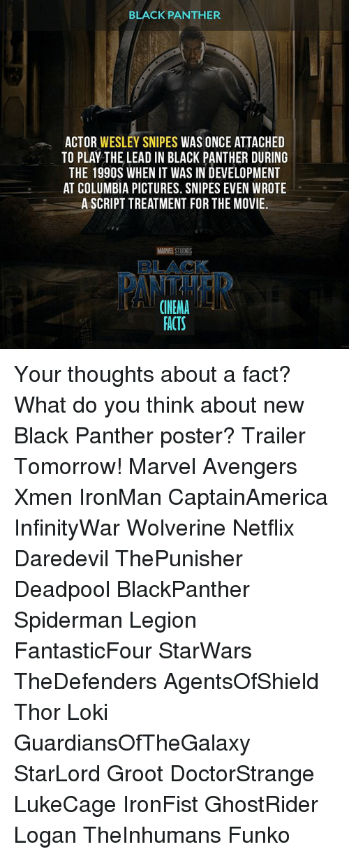 Facts, Memes, and Netflix: BLACK PANTHER  ACTOR WESLEY SNIPES  WAS ONCE ATTACHED  TO PLAY THE LEAD IN BLACK PANTHER DURING  THE 199OS WHEN IT WAS IN DEVELOPMENT  AT COLUMBIA PICTURES. SNIPES EVEN WROTE  A SCRIPT TREATMENT FOR THE MOVIE.  MARVESTUDOS  BLACK  CINEMA  FACTS Your thoughts about a fact? What do you think about new Black Panther poster? Trailer Tomorrow! Marvel Avengers Xmen IronMan CaptainAmerica InfinityWar Wolverine Netflix Daredevil ThePunisher Deadpool BlackPanther Spiderman Legion FantasticFour StarWars TheDefenders AgentsOfShield Thor Loki GuardiansOfTheGalaxy StarLord Groot DoctorStrange LukeCage IronFist GhostRider Logan TheInhumans Funko