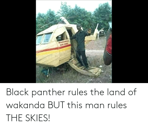 Black Panther: Black panther rules the land of wakanda BUT this man rules THE SKIES!