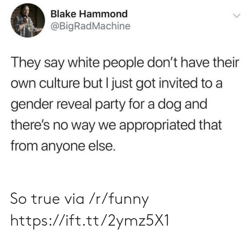 Funny, Party, and True: Blake Hammond  @BigRadMachine  They say white people don't have their  own culture but I just got invited to a  gender reveal party for a dog and  there's no way we appropriated that  from anyone else. So true via /r/funny https://ift.tt/2ymz5X1