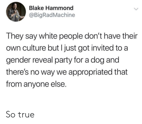 Party, True, and White People: Blake Hammond  @BigRadMachine  They say white people don't have their  own culture but I just got invited to a  gender reveal party for a dog and  there's no way we appropriated that  from anyone else. So true