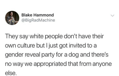 Party, White People, and White: Blake Hammond  @BigRadMachine  They say white people don't have their  own culture but I just got invited to a  gender reveal party for a dog and there's  no way we appropriated that from anyone  else.