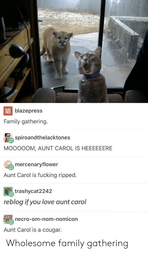 Family, Fucking, and Love: BLAZE  PRESS  blazepress  Family gathering.  spiroandthelacktones  MOOOOOM, AUNT CAROL IS HEEEEEERE  mercenaryflower  Aunt Carol is fucking ripped.  trashycat2242  reblog if you love aunt carol  necro-om-nom-nomicon  Aunt Carol is a cougar. Wholesome family gathering