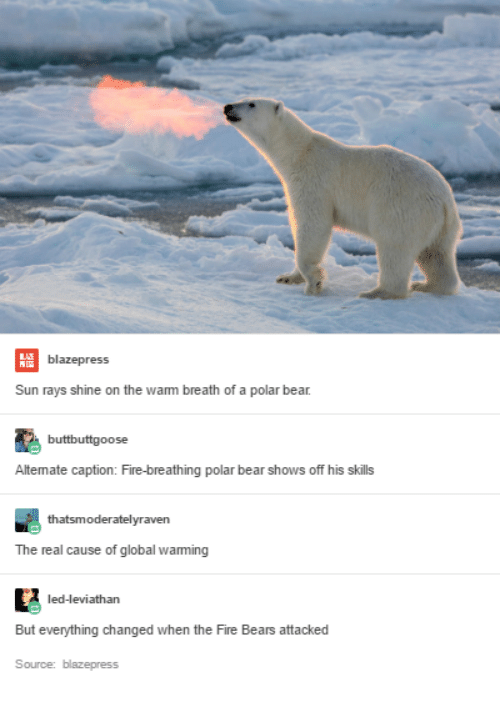polar bears and global warming By now the message is old hat to everybody, but in case you've forgotten, here's how greenpeace puts it: polar bears could completely disappear from the arctic in the next 100 years if we don't take action soon.