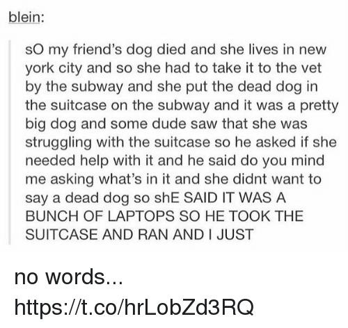 Vetted: blein:  sO my friend's dog died and she lives in new  york city and so she had to take it to the vet  by the subway and she put the dead dog in  the suitcase on the subway and it was a pretty  big dog and some dude saw that she was  struggling with the suitcase so he asked if she  needed help with it and he said do you mind  me asking what's in it and she didnt want to  say a dead dog so shE SAID IT WAS A  BUNCH OF LAPTOPS SO HE TOOK THE  SUITCASE AND RAN AND I JUST no words... https://t.co/hrLobZd3RQ