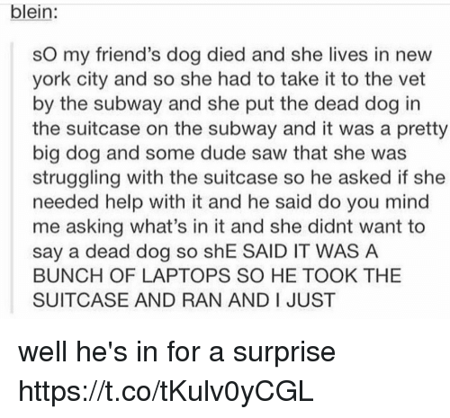 Vetted: blein:  sO my friend's dog died and she lives in new  york city and so she had to take it to the vet  by the subway and she put the dead dog in  the suitcase on the subway and it was a pretty  big dog and some dude saw that she was  struggling with the suitcase so he asked if she  needed help with it and he said do you mind  me asking what's in it and she didnt want to  say a dead dog so shE SAID IT WAS A  BUNCH OF LAPTOPS SO HE TOOK THE  SUITCASE AND RAN AND I JUST well he's in for a surprise https://t.co/tKulv0yCGL
