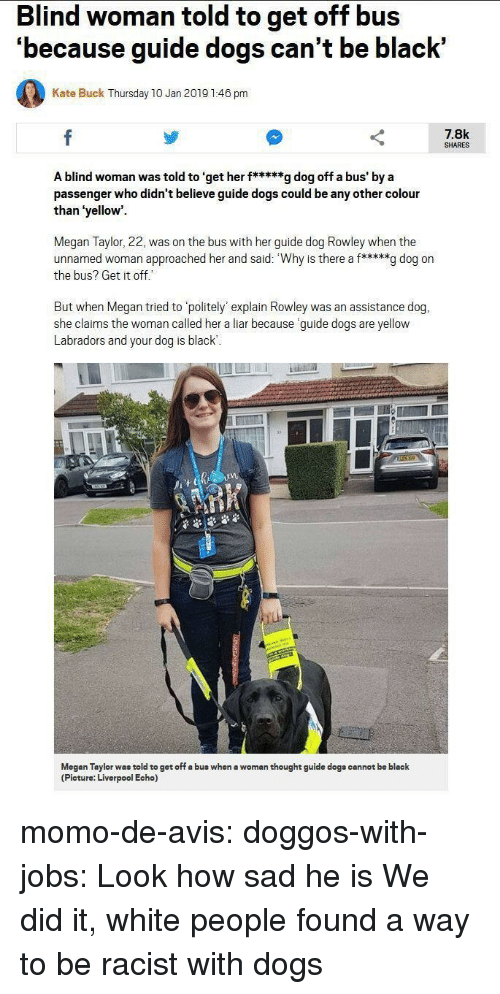 Dogs, Megan, and Tumblr: Blind woman told to get off bus  'because guide dogs can't be black'  Kate Buck Thursday 10 Jan 2019 1:46 pm  7.8k  SHARES  A blind woman was told to 'get her f*****g dog off a bus' by a  passenger who didn't believe guide dogs could be any other colour  than 'yellow  Megan Taylor, 22, was on the bus with her guide dog Rowley when the  unnamed woman approached her and said: Why is there a f*****g dog on  the bus? Get it off  But when Megan tried to politely' explain Rowley was an assistance dog,  she claims the woman called her a liar because guide dogs are yellow  Labradors and your dog is black  1  Megan Taylor was told to get off a bus when a woman thought guide dogs cannot be black  (Picture: Liverpool Echo) momo-de-avis: doggos-with-jobs:  Look how sad he is  We did it, white people found a way to be racist with dogs