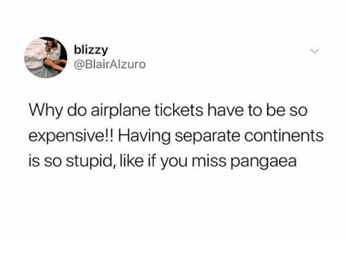 Dank, Airplane, and 🤖: blizzy  @BlairAlzuro  Why do airplane tickets have to be so  expensive!! Having separate continents  is so stupid, like if you miss pangaea