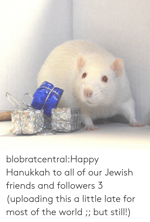 Hanukkah: blobratcentral:Happy Hanukkah to all of our Jewish friends and followers 3 (uploading this a little late for most of the world ;; but still!)