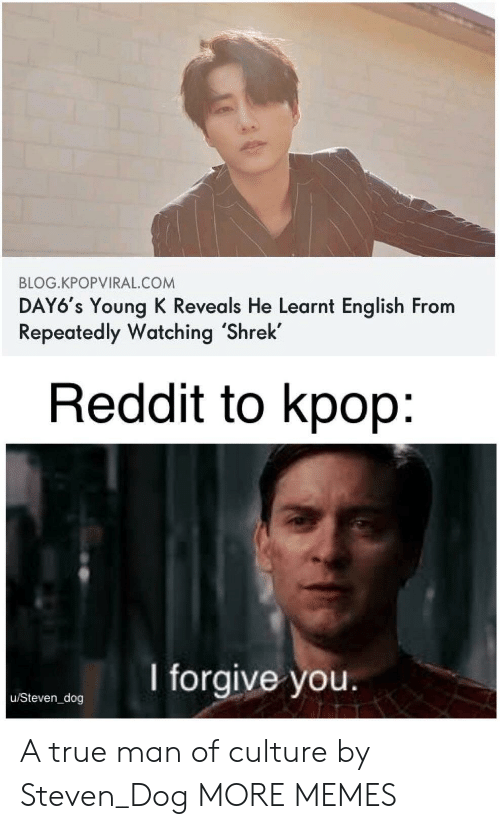 Dank, Memes, and Reddit: BLOG.KPOPVIRAL.COM  DAY6's Young K Reveals He Learnt English From  Repeatedly Watching 'Shrek  Reddit to kpop:  I forgive you.  u/Steven_dog A true man of culture by Steven_Dog MORE MEMES