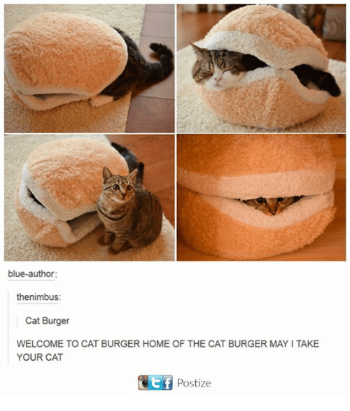Dank, Blue, and Home: blue-author:  the nimbus:  Cat Burger  WELCOME TO CAT BURGER HOME OF THE CAT BURGER MAYI TAKE  YOUR CAT  Cit f  Postize
