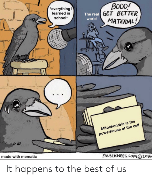 Material: Bo0o  The real GET BETTER  MATERIAL!  everything  learned in  school*  world  Mitochondria is the  powerhouse of the cell  made with mematic  FALSEKNEES.COM@2016 It happens to the best of us