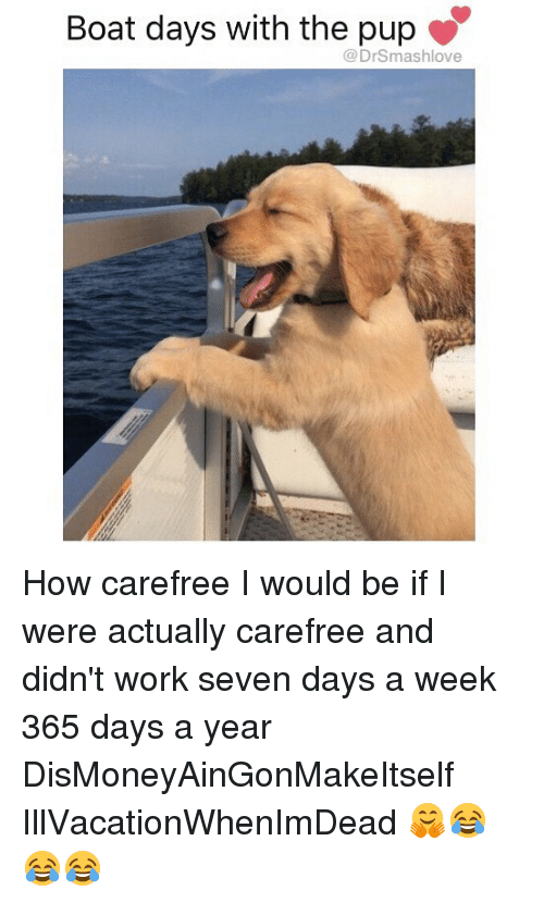 Memes, Work, and Pup: Boat days with the pup  @DrSmashlove How carefree I would be if I were actually carefree and didn't work seven days a week 365 days a year DisMoneyAinGonMakeItself IllVacationWhenImDead 🤗😂😂😂
