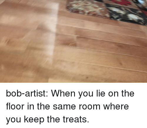 Tumblr, Blog, and Http: bob-artist:  When you lie on the floor in the same room where you keep the treats.