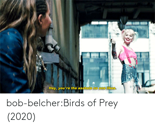 Tumblr Com: bob-belcher:Birds of Prey (2020)