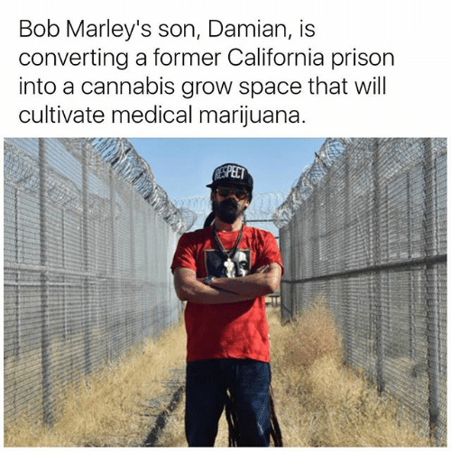 spect: Bob Marley's son, Damian, is  converting a former California prison  into a cannabis grow space that will  cultivate medical marijuana.  SPECT