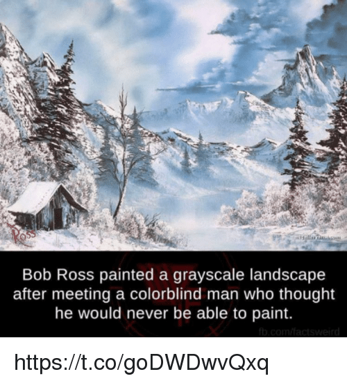 Memes, Bob Ross, and Paint: Bob Ross painted a grayscale landscape  after meeting a colorblind man who thought  he would never be able to paint.  b.com/factsweird https://t.co/goDWDwvQxq