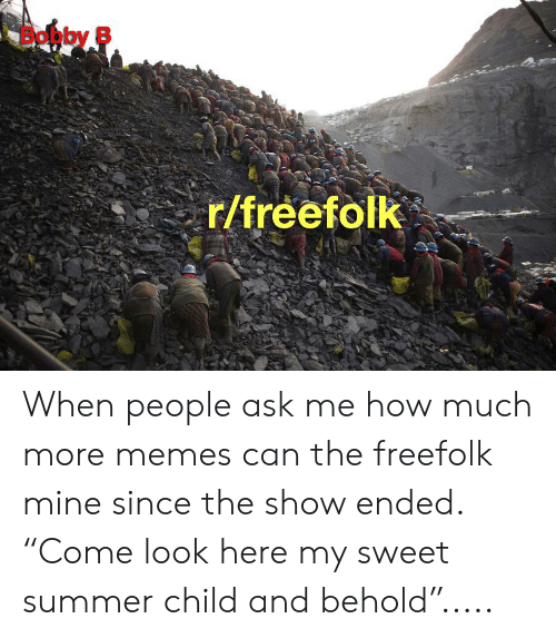 """Memes, Summer, and How: Bobby B  r/freefolk When people ask me how much more memes can the freefolk mine since the show ended. """"Come look here my sweet summer child and behold""""....."""