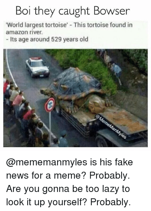 """Amazon, Bowser, and Fake: Boi they caught Bowser  """"World largest tortoise' This tortoise found in  amazon river.  its age around 529 years old @mememanmyles is his fake news for a meme? Probably. Are you gonna be too lazy to look it up yourself? Probably."""