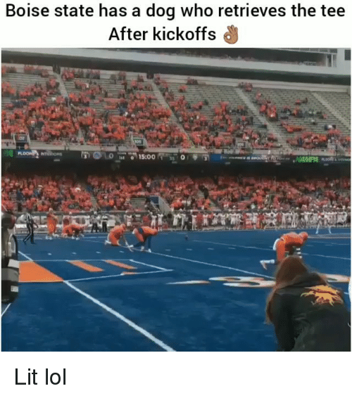 Funny, Lit, and Lol: Boise state has a dog who retrieves the tee  After kickoffs  RO Lit lol