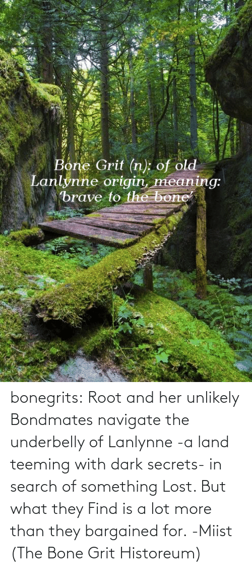 In Search Of: Bone Grit (n): of old  Lanlynne origin, meaning:  brave to the bone bonegrits:   Root and her unlikely Bondmates navigate the underbelly of Lanlynne -a land teeming with dark secrets- in search of something Lost. But what they Find is a lot more than they bargained for. -Miist (The Bone Grit Historeum)