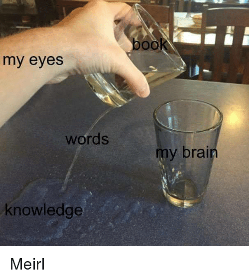 Book, Brain, and Knowledge: book  my eyes  words  my  brain  knowledge Meirl