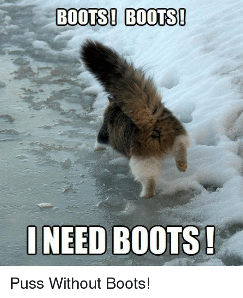 Pussing: BOOTS! BOOTS!  NEED BOOTS! Puss Without Boots!
