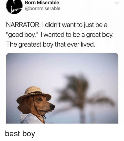 "Memes, Best, and Good: Born Miserable  @bornmiserable  NARRATOR: I didn't want to just be a  ""good boy:"" I wanted to be a great boy.  The greatest boy that ever lived. best boy"