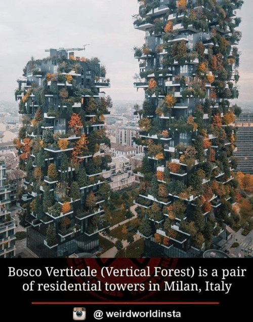 Milan: Bosco Verticale (Vertical Forest) is a pair  of residential towers in Milan, Italy  weirdworldinsta