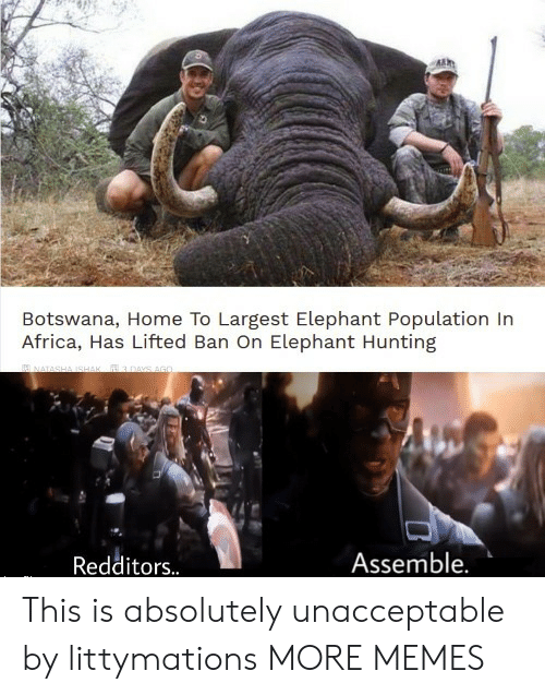 Africa, Dank, and Memes: Botswana, Home To Largest Elephant Population In  Africa, Has Lifted Ban On Elephant Hunting  Assemble.  Redditors.. This is absolutely unacceptable by littymations MORE MEMES