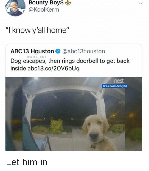 """Memes, Abc13, and Home: Bounty  Boy$  @KoolKerm  """"I know y'all home""""  ABC13 Houston @abc13houston  Dog escapes, then rings doorbell to get back  inside abc13.co/2OV6bUq  @WILL ENT  nest  Greg Basel/Storyful Let him in"""