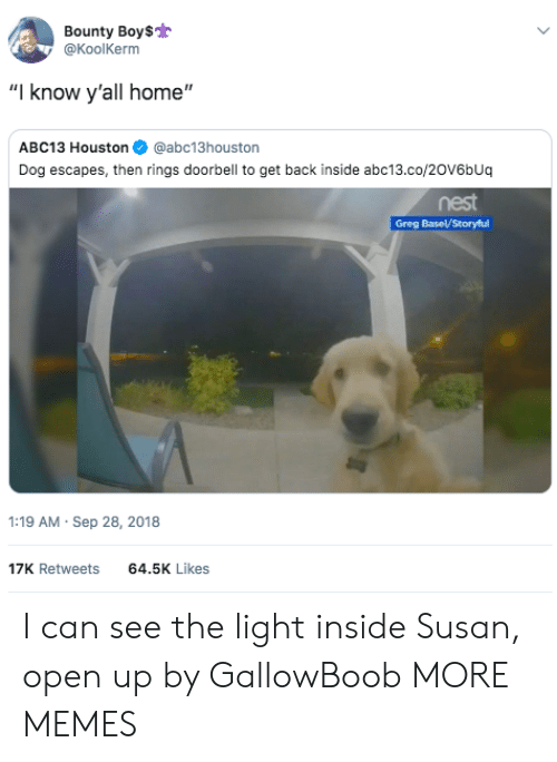 """Dank, Memes, and Target: Bounty Boy$  @KoolKerm  """"I know y'all home""""  ABC13 Houston@abc13houston  Dog escapes, then rings doorbell to get back inside abc13.co/20V6bUq  nest  :19 AM Sep 28, 2018  17K Retweets  64.5K Likes I can see the light inside Susan, open up by GallowBoob MORE MEMES"""