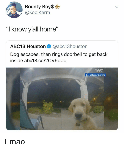 """Lmao, Memes, and Abc13: Bounty Boy$o  @KoolKerm  """"I know y'all home""""  ABC13 Houston @abc13houston  Dog escapes, then rings doorbell to get back  inside abc13.co/20V6bUq  Greg Basel/Storyful Lmao"""