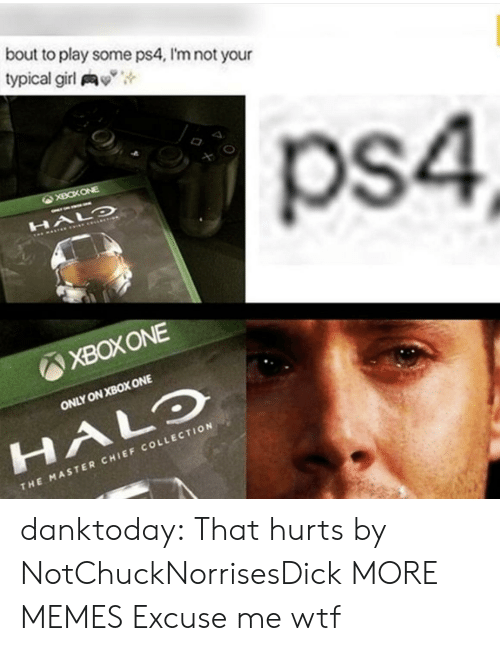 """Dank, Halo, and Memes: bout to play some ps4, I'm not your  typical girl y"""",  ps4  XBOXONE  ONLY ON XBOX ONE  HALO  CHI  THE MASTER CHIEF COLLECTION danktoday:  That hurts by NotChuckNorrisesDick MORE MEMES  Excuse me wtf"""