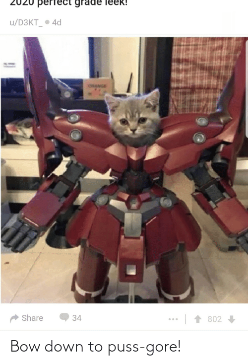 Down To: Bow down to puss-gore!