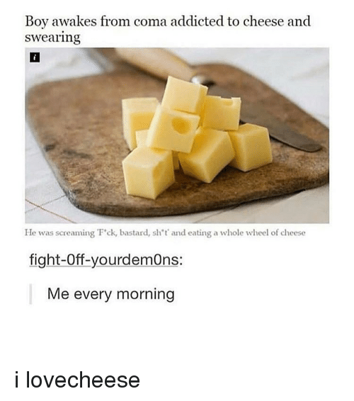 Memes, Addicted, and Fight: Boy awakes from coma addicted to cheese and  swearing  He was screaming F'ck, bastard, sh't' and eating a whole wheel of cheese  fight-Off-yourdemOns:  Me every morning i lovecheese