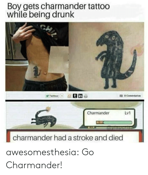 Charmander, Drunk, and Tumblr: Boy gets charmander tattoo  while being drunk  Charmander  Lv1  charmander had a stroke and died awesomesthesia:  Go Charmander!