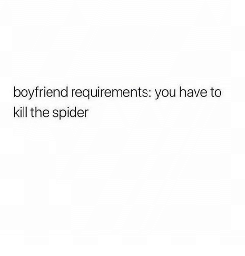 Spider, Boyfriend, and Humans of Tumblr: boyfriend requirements: you have to  kill the spider