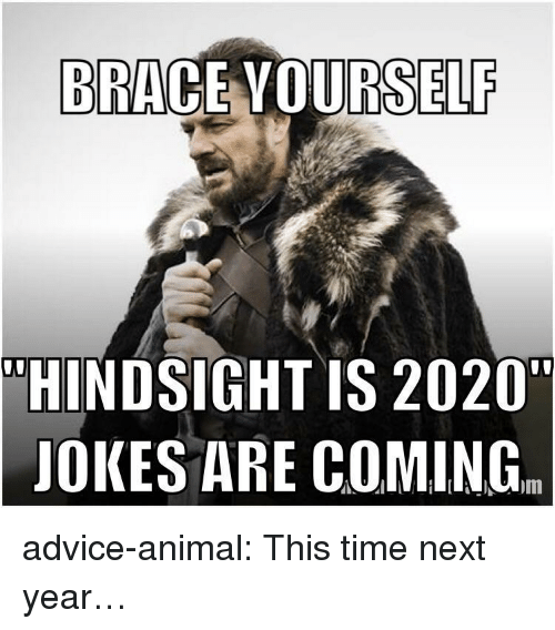 "Advice, Tumblr, and Animal: BRACE VOURSELF  ""HINDSIGHT IS 2020""  JOKES ARE COMING. advice-animal:  This time next year…"