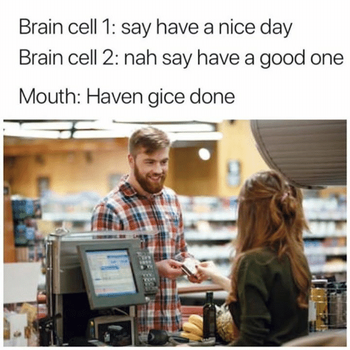 nice-day: Brain cell 1: say have a nice day  Brain cell 2: nah say have a good one  Mouth: Haven gice done